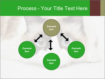 0000073428 PowerPoint Template - Slide 91