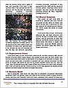 0000073432 Word Template - Page 4