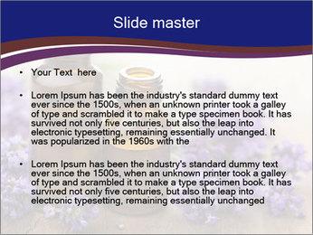 0000073435 PowerPoint Template - Slide 2