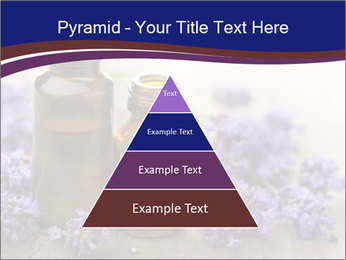 0000073435 PowerPoint Template - Slide 30