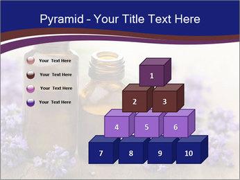 0000073435 PowerPoint Template - Slide 31