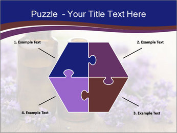 0000073435 PowerPoint Template - Slide 40