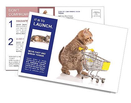 0000073436 Postcard Templates