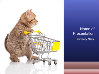 0000073436 PowerPoint Templates - Slide 1