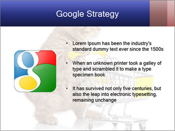 0000073436 PowerPoint Templates - Slide 10
