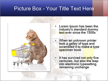 0000073436 PowerPoint Templates - Slide 13
