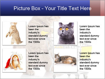 0000073436 PowerPoint Templates - Slide 14