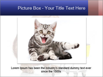 0000073436 PowerPoint Templates - Slide 16