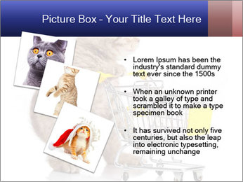 0000073436 PowerPoint Templates - Slide 17