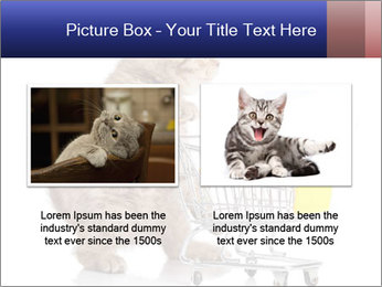 0000073436 PowerPoint Templates - Slide 18
