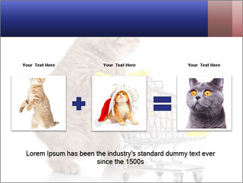 0000073436 PowerPoint Templates - Slide 22