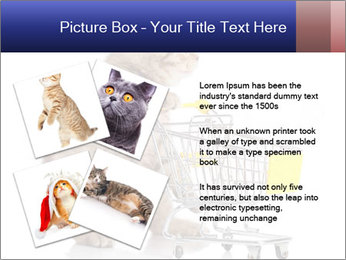 0000073436 PowerPoint Templates - Slide 23