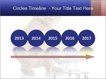 0000073436 PowerPoint Templates - Slide 29