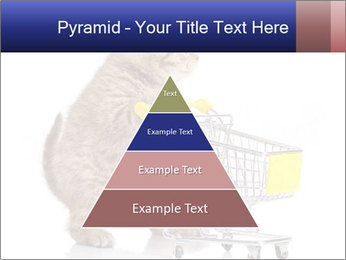 0000073436 PowerPoint Templates - Slide 30