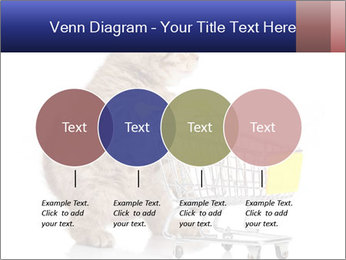 0000073436 PowerPoint Templates - Slide 32