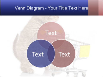 0000073436 PowerPoint Templates - Slide 33