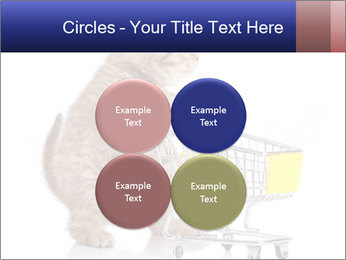 0000073436 PowerPoint Templates - Slide 38