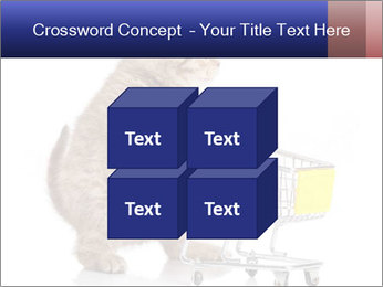 0000073436 PowerPoint Templates - Slide 39