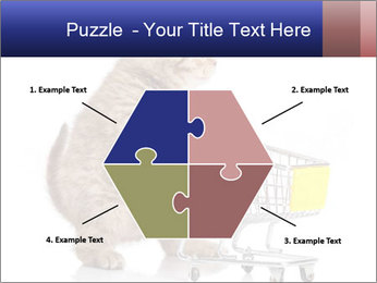 0000073436 PowerPoint Templates - Slide 40