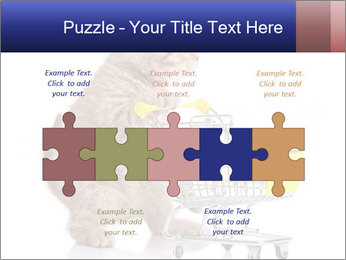 0000073436 PowerPoint Templates - Slide 41