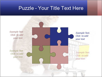0000073436 PowerPoint Templates - Slide 43
