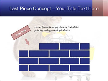 0000073436 PowerPoint Templates - Slide 46