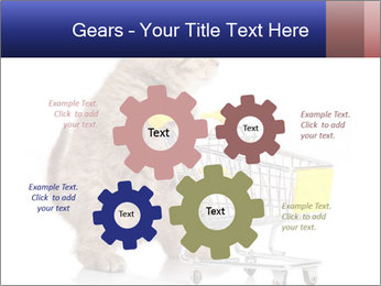 0000073436 PowerPoint Templates - Slide 47