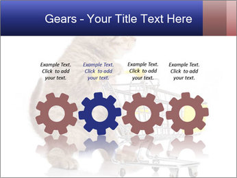 0000073436 PowerPoint Templates - Slide 48