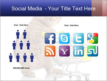 0000073436 PowerPoint Templates - Slide 5