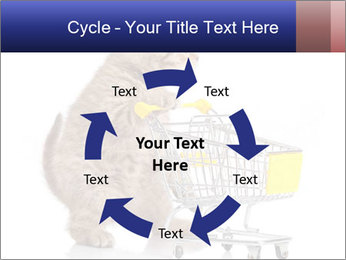 0000073436 PowerPoint Templates - Slide 62