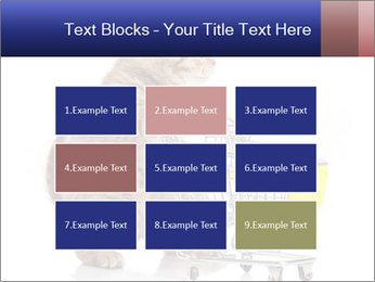 0000073436 PowerPoint Templates - Slide 68