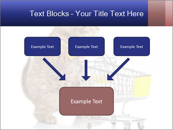 0000073436 PowerPoint Templates - Slide 70