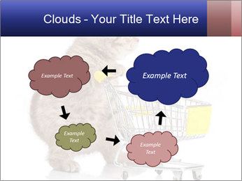 0000073436 PowerPoint Templates - Slide 72