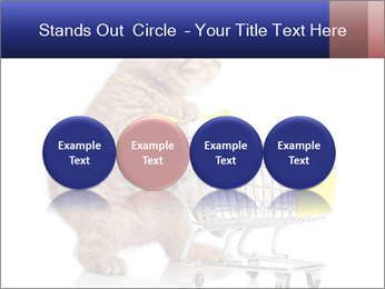 0000073436 PowerPoint Templates - Slide 76