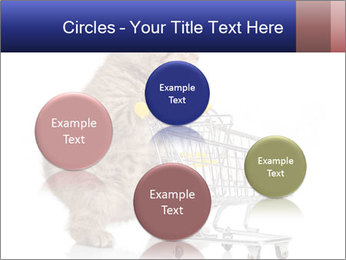 0000073436 PowerPoint Templates - Slide 77