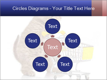 0000073436 PowerPoint Templates - Slide 78