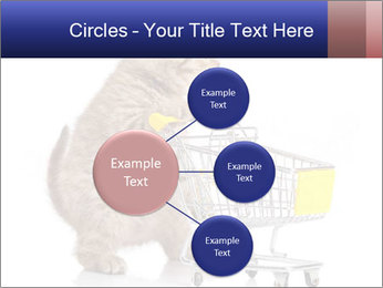 0000073436 PowerPoint Templates - Slide 79