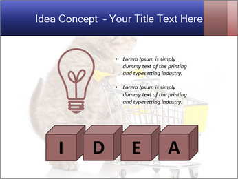 0000073436 PowerPoint Templates - Slide 80
