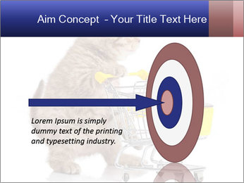 0000073436 PowerPoint Templates - Slide 83