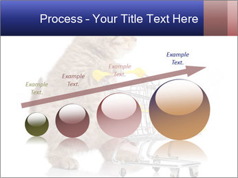 0000073436 PowerPoint Templates - Slide 87
