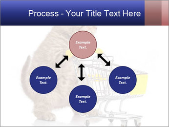 0000073436 PowerPoint Templates - Slide 91