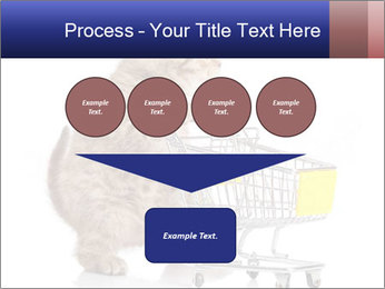 0000073436 PowerPoint Templates - Slide 93