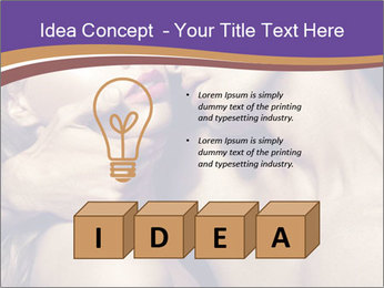 0000073444 PowerPoint Template - Slide 80