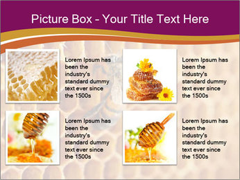 0000073446 PowerPoint Template - Slide 14