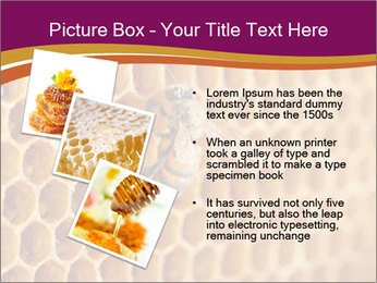 0000073446 PowerPoint Template - Slide 17