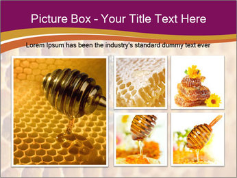 0000073446 PowerPoint Template - Slide 19