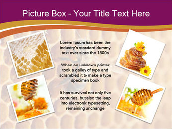 0000073446 PowerPoint Template - Slide 24