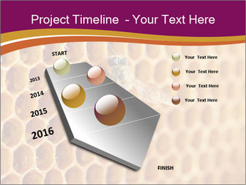 0000073446 PowerPoint Template - Slide 26
