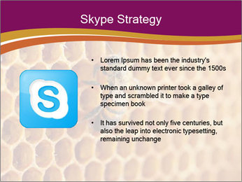 0000073446 PowerPoint Template - Slide 8