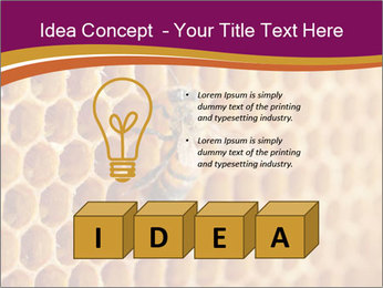0000073446 PowerPoint Template - Slide 80